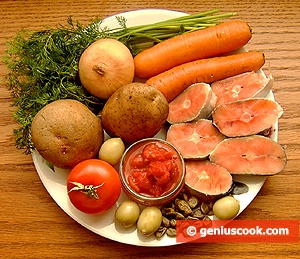 Ingredients for Salmon Cream Soup