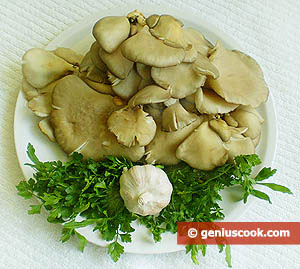 Oyster Mushrooms, Parsley, Garlic