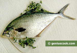 Ingredients for Leerfish Patties