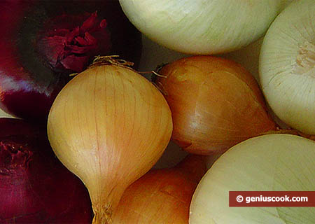 Onion Is Rich in Querzetin