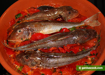 Fish Is Simmering in the Tomato Sauce
