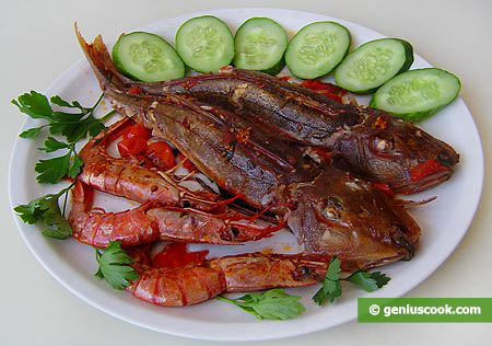 Gurnard with Shrimps in Tomato Sauce