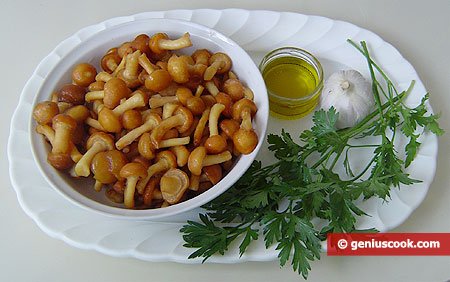 Ingredients for Fried Honey Mushrooms with Garlic