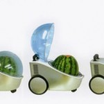 A Portable Refrigerator for Watermelons