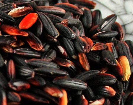 Black Rice Is an Excellent Source of Antioxidants