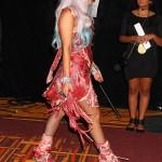 Lady Gaga Dressed in Raw Meat