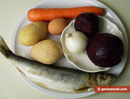 Ingredients for salad Dressed Herring