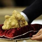 White Truffle Sets Price Record