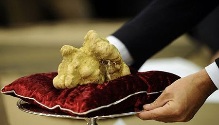 White Truffle Sets Price Record