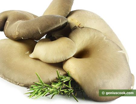 Oyster Mushrooms Help in Slimming Down
