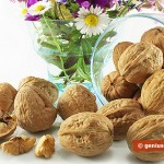 Walnuts Are the Best Food for the Heart