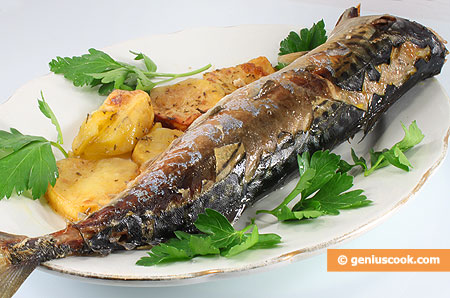 Baked Mackerel with Potatoes