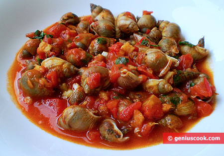 Sea Snails in Tomato Sauce