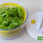 Salad Centrifugal Dryer