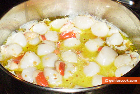 add scallops, salt, pepper and stew