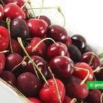 Sweet Cherry for Sorbet