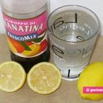 Ingredients for Granita with Lemon and Grenadine