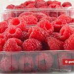 Raspberry for Sorbet