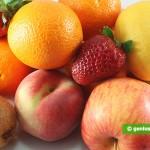 Vegetables and Fruits Make a Good Antidepressant Medication
