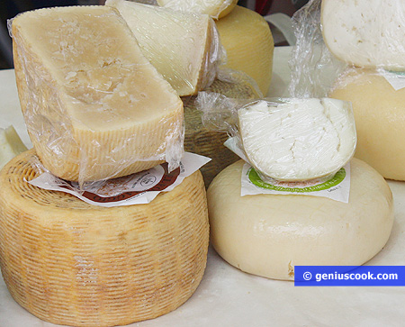Different types of delicious goat cheese