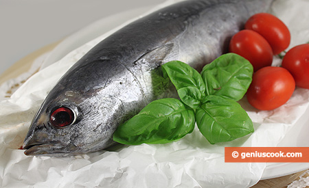 Ingredients for Tuna in Tomato Sauce