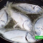 Fry fish on both sides, until nice crust