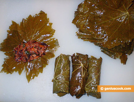 stuffed vine leaves and roll