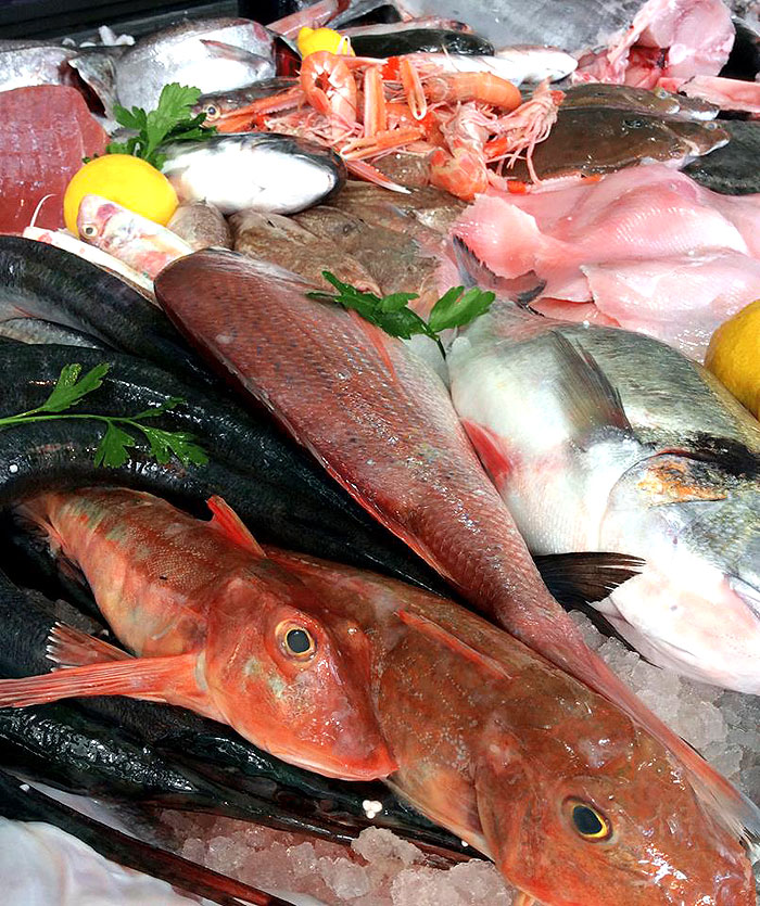 fish lots variety of fish  culinary news  genius cook  healthy nutrition tasty food